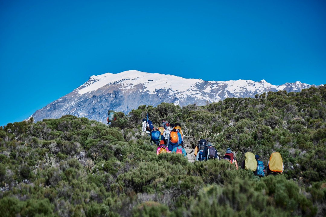 Reaching For The Roof Of Africa And What It Reminded Me; My Mt. Kilimanjaro Story